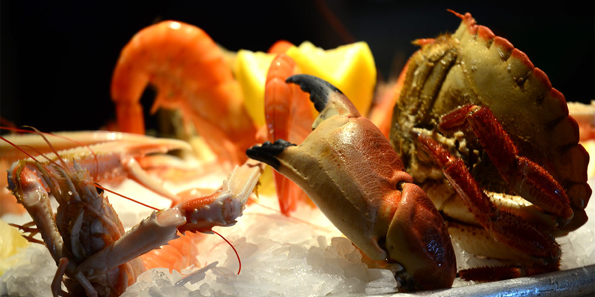 crabe-01